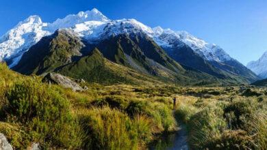 Photo of 9 Best Moving Ways Around New Zealand