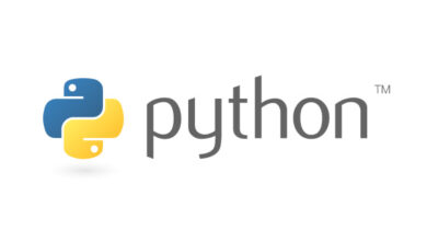 Photo of How Might Students Score Good In Python Programming Assignment?