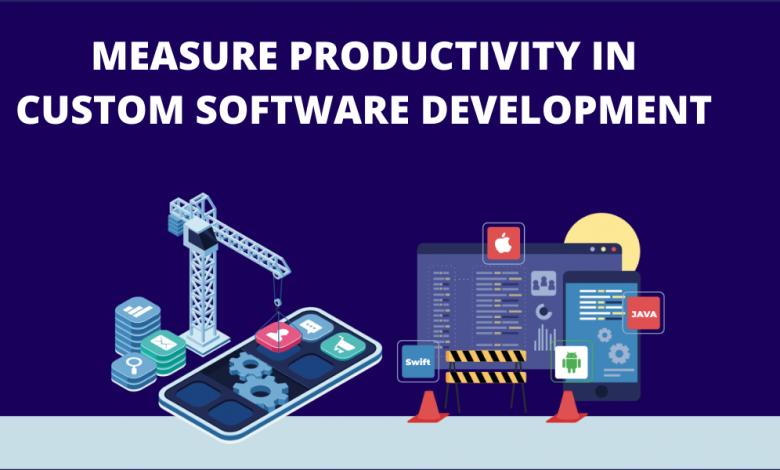 Custom Software Development productivity