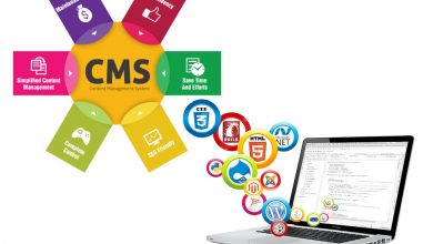 Photo of We Have To Appreciate The Efforts Of Web And CMS Management Company