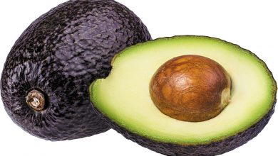 Photo of Avocado Seeds Is The Best Benefits Of Health