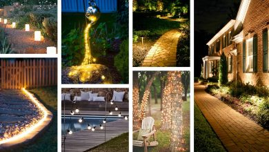 Photo of Landscape Lighting Ideas – How To Light The Landscape Of Your Home With 7 Different Types Of Luminaires