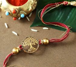 Photo of Different Ways in Which a Single Child Can Celebrate Raksha Bandhan