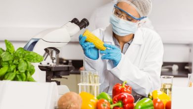 Photo of Global Food Safety Testing Market by Target Tested